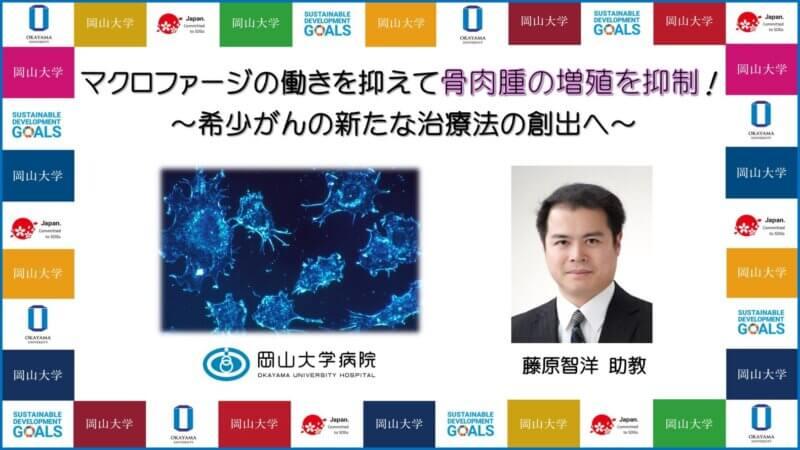 【岡山大学】マクロファージの働きを抑えて骨肉腫の増殖を抑制!~希少がんの新たな治療法の創出へ~の画像