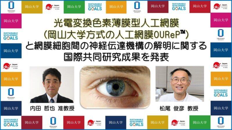 【岡山大学】光電変換色素薄膜型人工網膜(岡山大学方式の人工網膜 OUReP™)と網膜細胞間の神経伝達機構の解明に関する国際共同研究成果を発表の画像