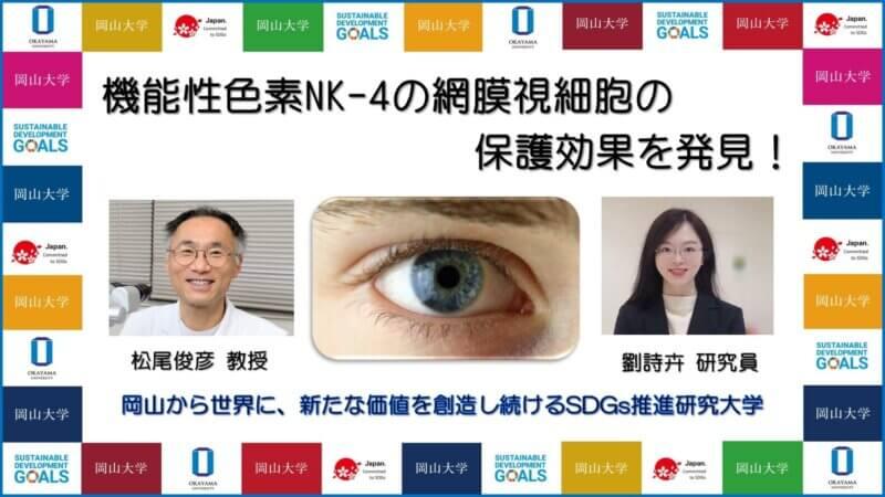【岡山大学】機能性色素NK-4の網膜視細胞の保護効果を発見!の画像